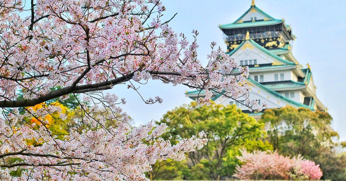 大阪賞櫻照過來 6個必去賞櫻景點大搜索!