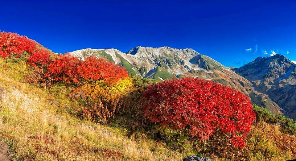 秋天就是要賞楓啊!日本立山美的如詩如畫