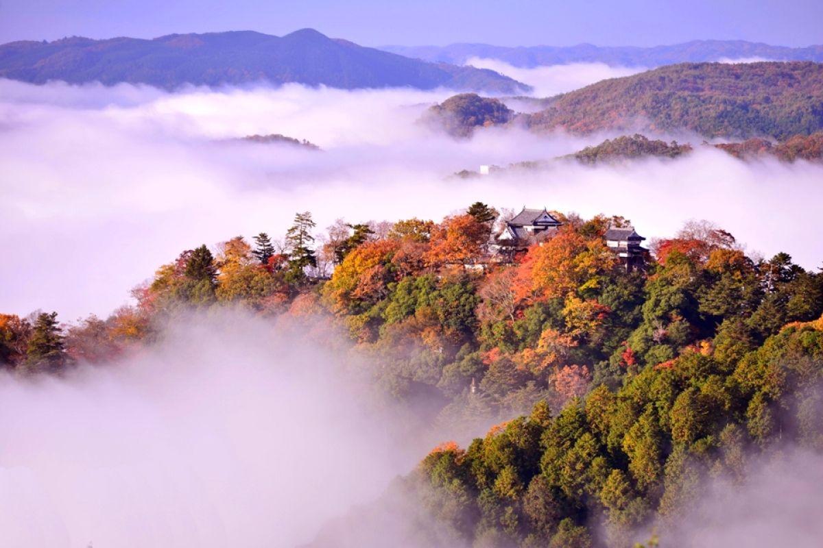 岡山其實很好玩|被雲圍繞的天守閣