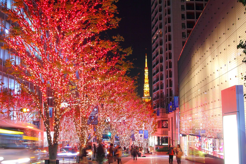 東京六本木聖誕燈飾登場 繽紛閃耀櫸樹坂 超浪漫